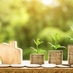 milieu nature economie